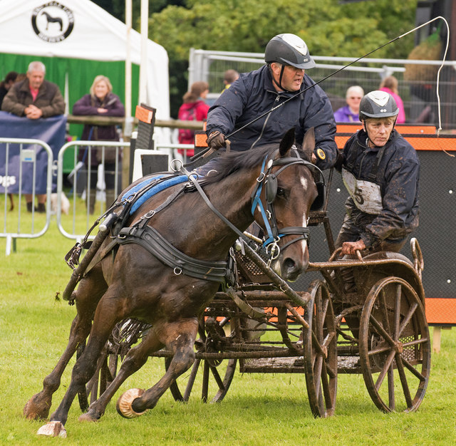 The Lowther Show - 12 August 2017 (9)