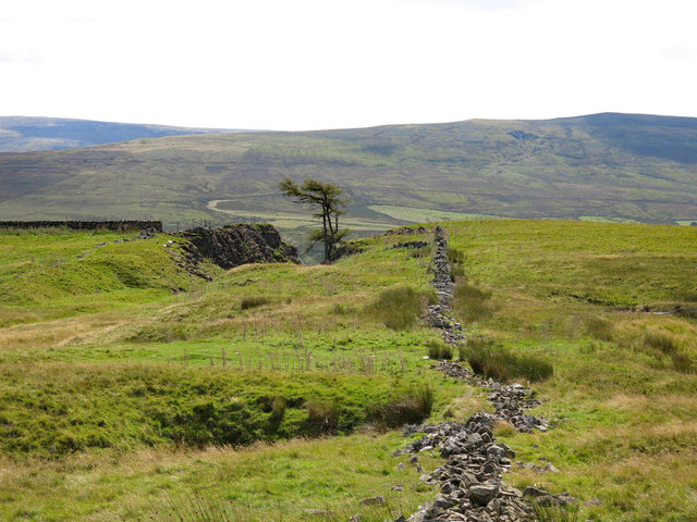 Ruined dry stone wall above Slit Foot