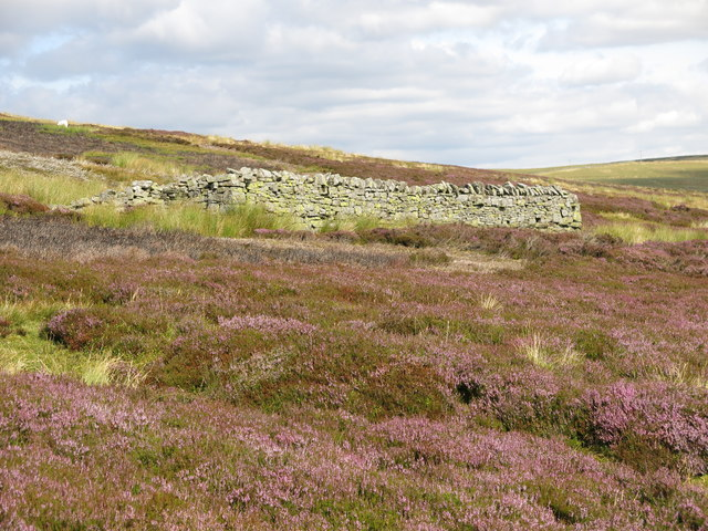 Sheepfold above High Puddingthorn