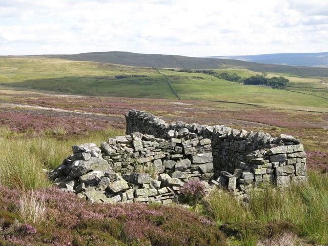 Sheepfold above High Puddingthorn (2)