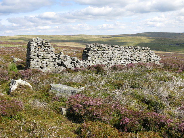 Short section of dry stone wall on Puddingthorn Moor