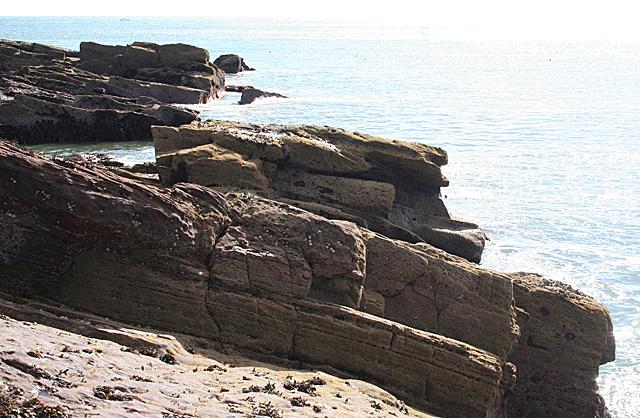 Intertidal Rocks