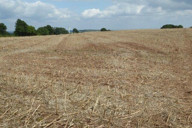 Stubble field near Hewelsfield