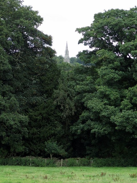 Spire of St Mary's Church from Hill House Farm