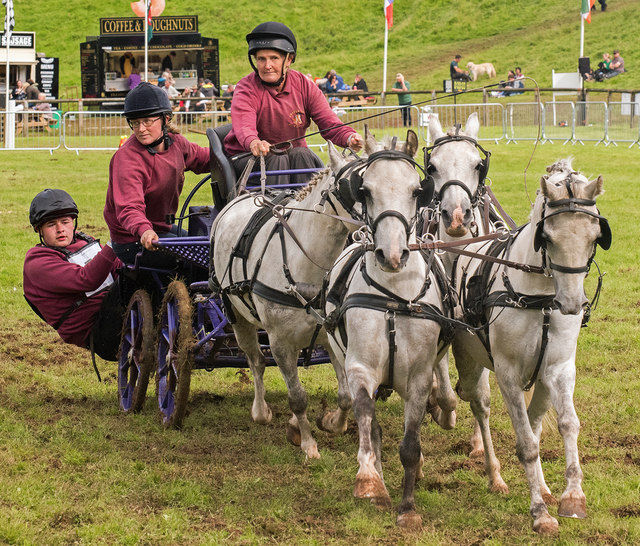 The Lowther Show - 12 August 2017 (28)