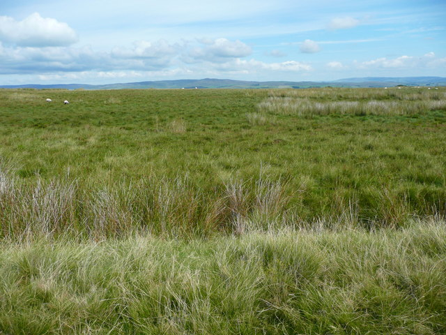 Looking across a ditch on Holden Moor, Rathmell