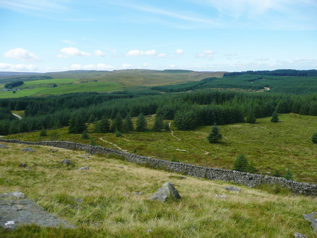 View of Gisburn Forest from Whelp Stone Crag, Rathmell