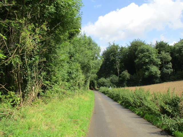 Lane to Clatford by Broom Copse