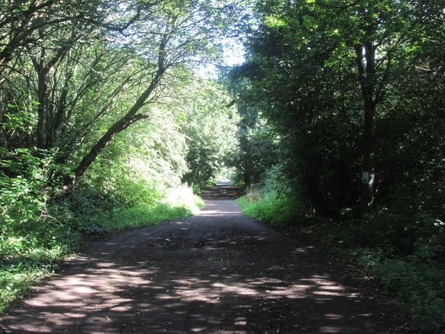 Trans Pennine Trail towards Bentley
