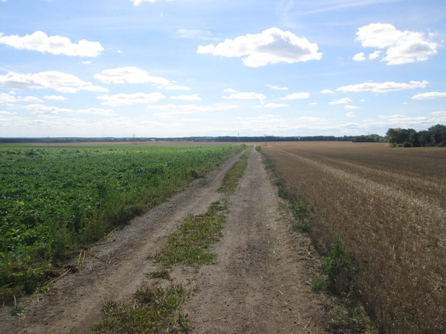 Bridleway towards High Melton