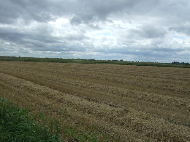 Recently harvested field, Bishop's Land