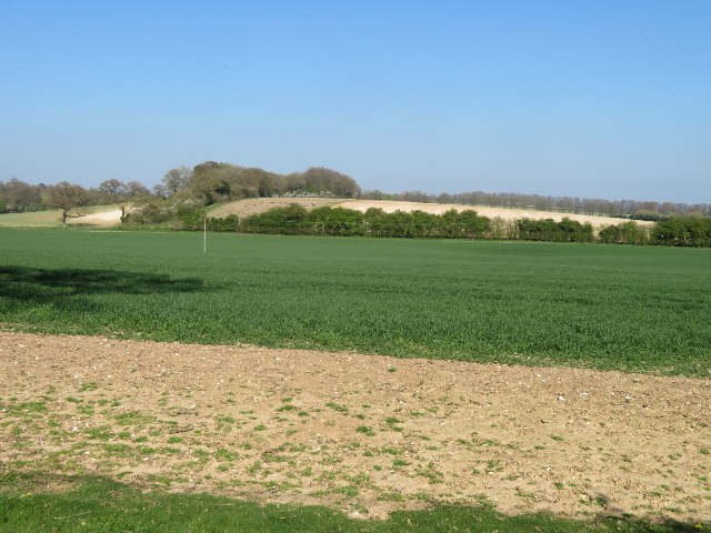 Fields by Summer Down Farm