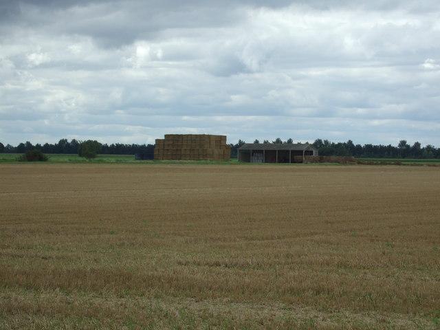 Stubble field near Toll Farm