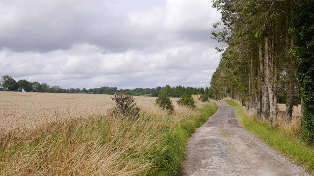 Route between Upper Cockshutt and Chetton