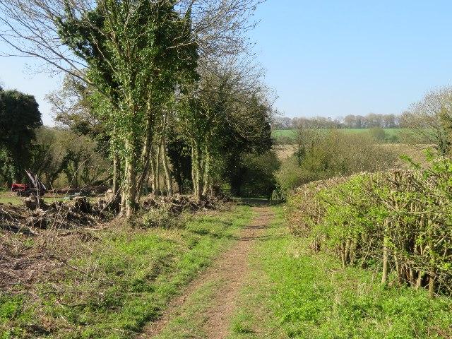 Wayfarer's Walk near White Lane