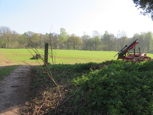 Field by Patchbourne Wood