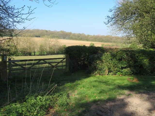 Field north of White Lane
