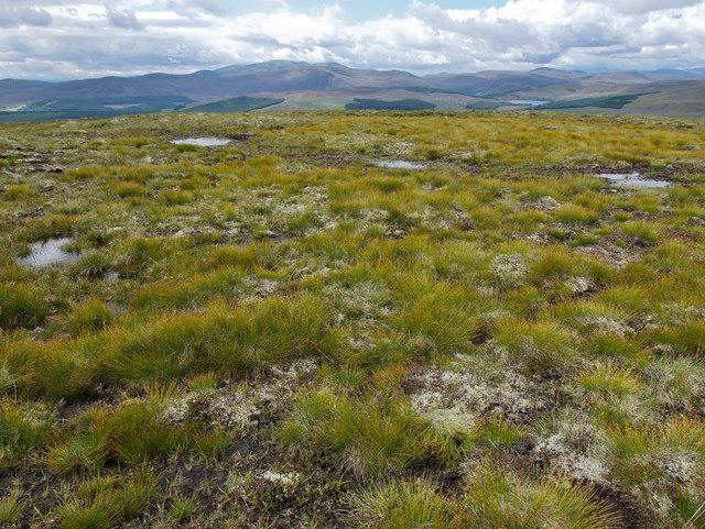 Boggy hillside below Sidhean a' Choin Bhain