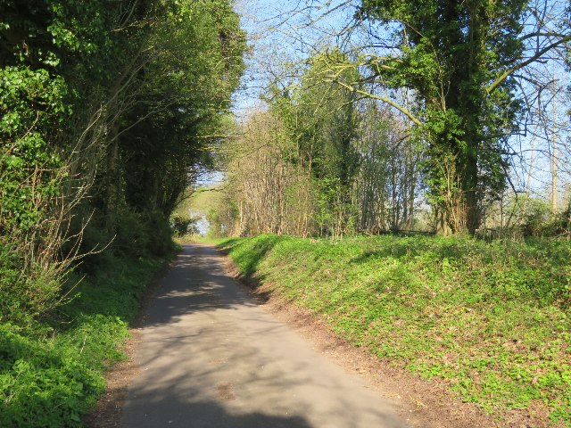 Lane towards Ibworth
