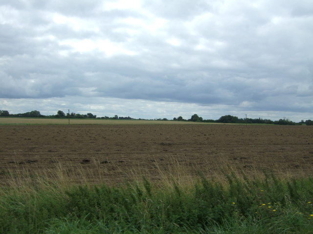 Fields, Birch Fen