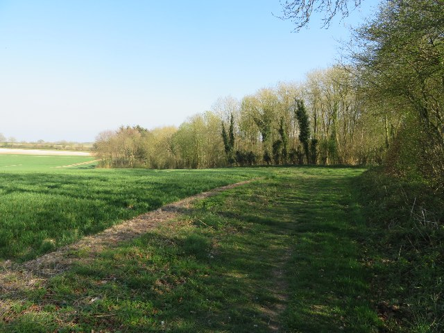 Footpath around Lockley Copse