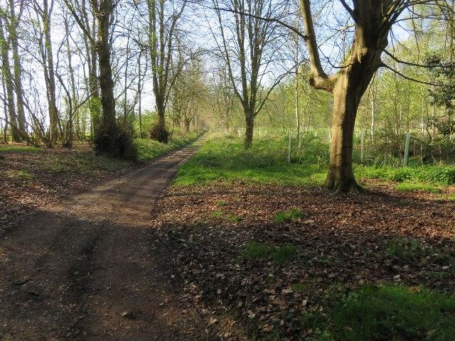 Footpath through Malshanger estate
