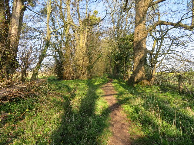 Footpath by Rifle Butts Field (117.5 acres)