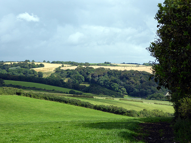 Farmland viewed from the South West Coastal Path