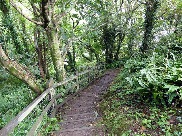 Steps descending towards Polkerris