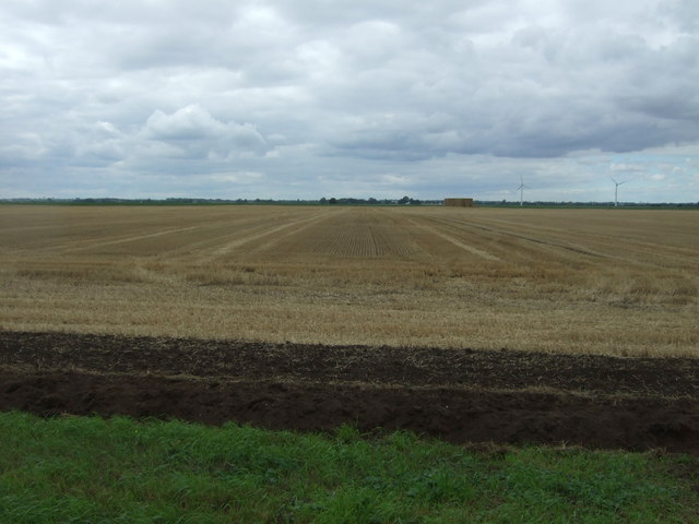 Stubble field near Stocking Drove Farm