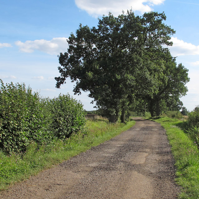 Byway near Dacre Cottages, Berners Roding