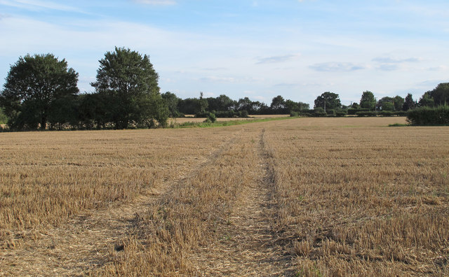 Recently Harvested Wheat Field, Willingale