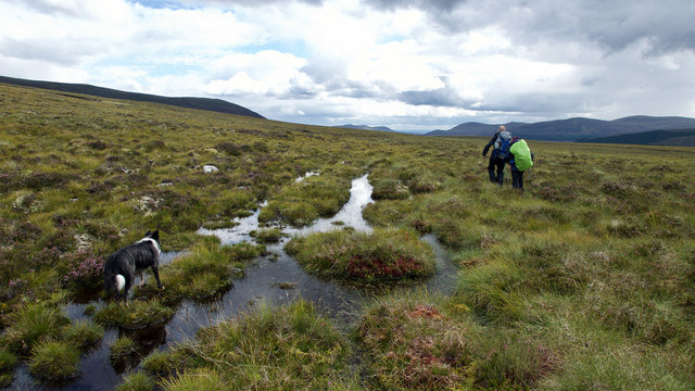 Following the line of the Strath Rusdale to Fearn path