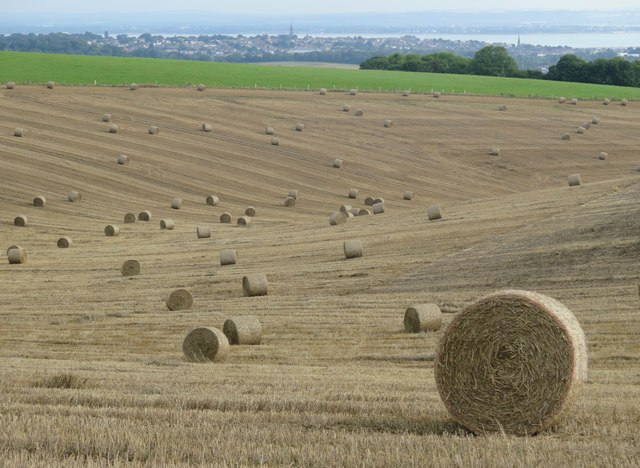 Straw bales beside the Brading Down road, Isle of Wight