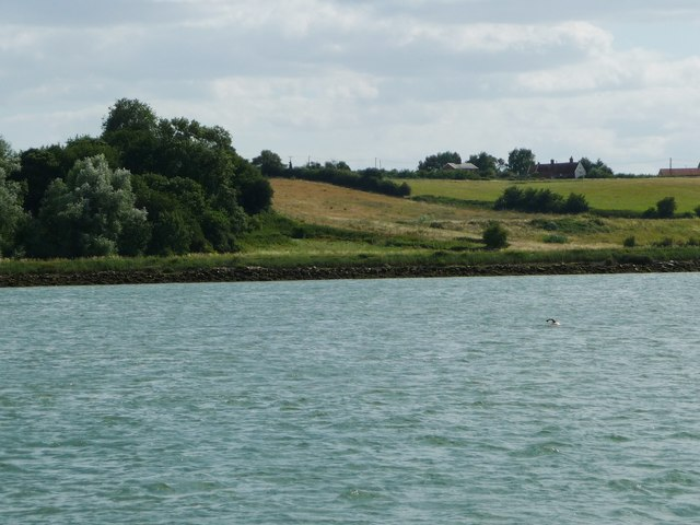 Western end of Man's Cliff, from the River Orwell