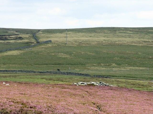 Moorland around Rowan's Currick