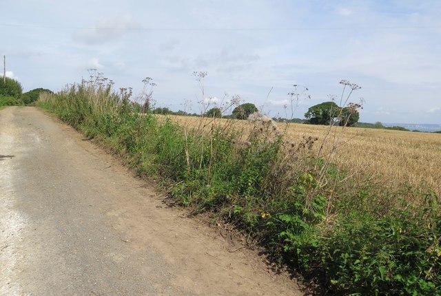 Attrill's Lane, near Nettlestone, Isle of Wight