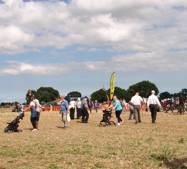Visitors at the summer show