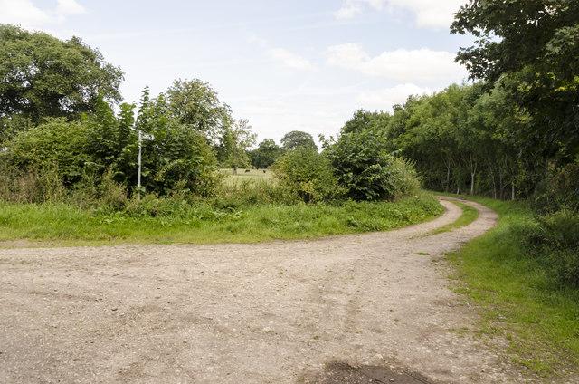 Public Bridleway off lane to Ossington