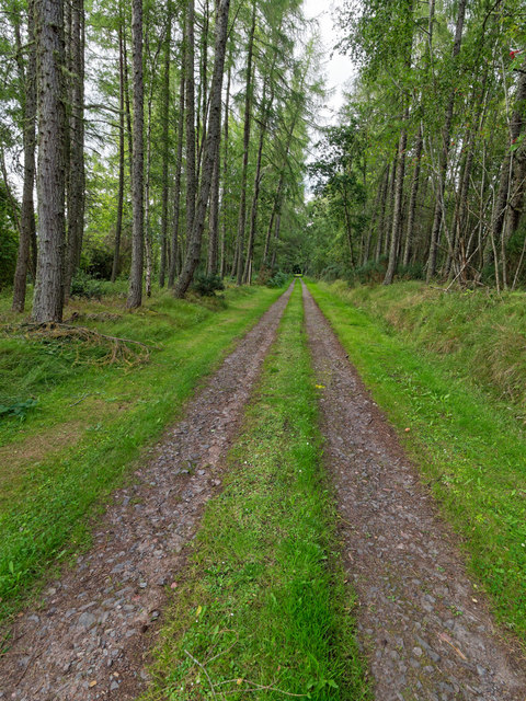 Estate Track to Braelangwell House