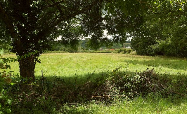 Field next to Nobody Inn