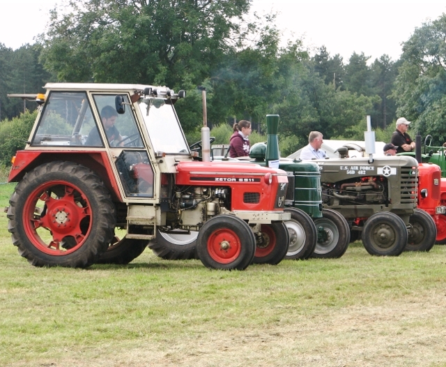 Assorted vintage tractors in the parade ring