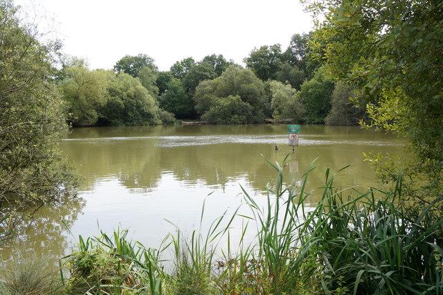Stew Pond, Epsom Common