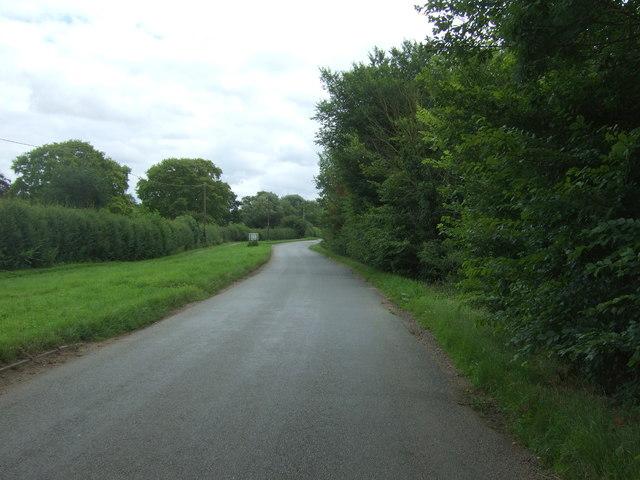 Bury Lane towards Sutton-in-the-Isle