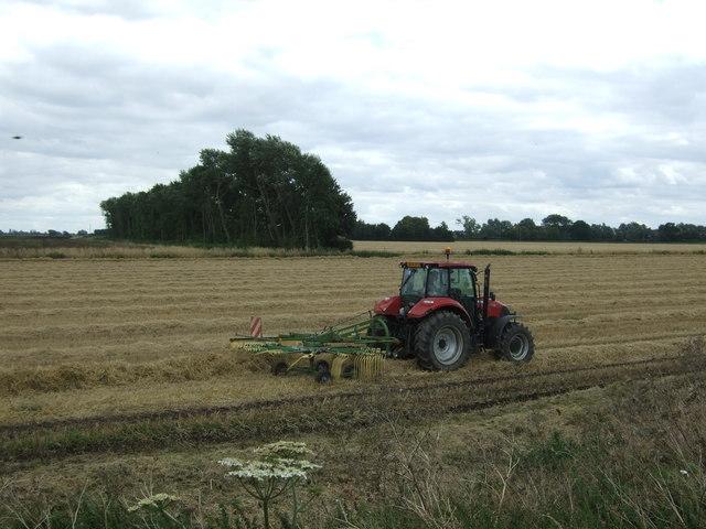 Turning straw