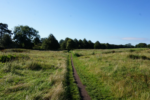 Path towards Fulford