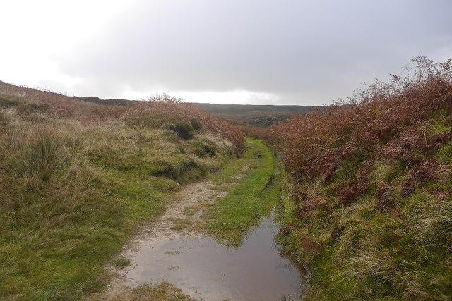Track on Sun Moor