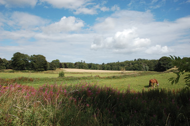 Greenbelt at the edge of Dyce