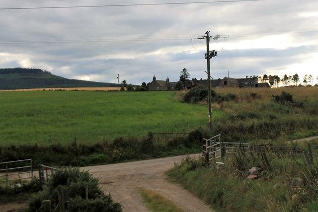 Sauchenbush Farm