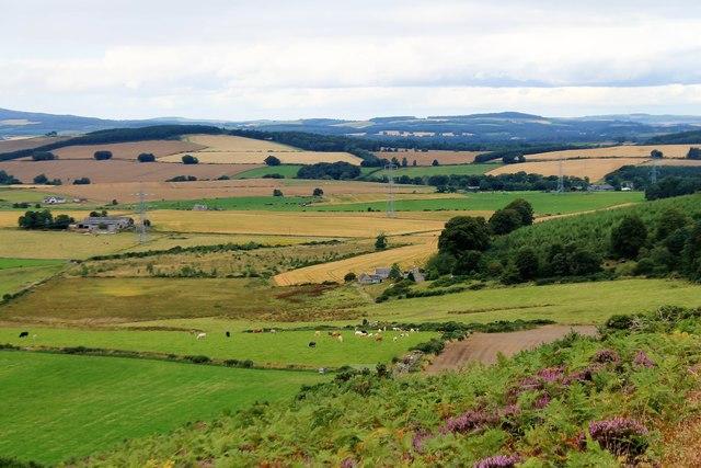 Upper Broomhill